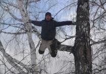 Омский «тик-токер с берёзы» дождался новой вышки связи у его родной деревни