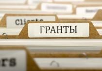 Социальные предприниматели Тюменской области могут получить гранты до 500 тысяч рублей