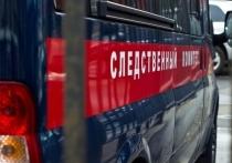 Страшная трагедия произошла в станице Старомышастовской Краснодарского края, где водитель грузовика, выгружая перегной, случайно засыпал девочку