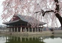 Центр корейской медицины откроют на Кавминводах
