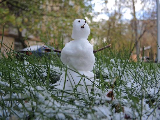 Москвичам рассказали, когда сойдет снег