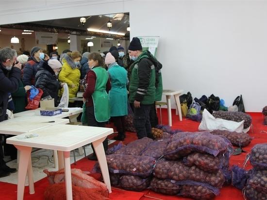 В Чувашии открылась XIII межрегиональная выставка «Картофель-2021»