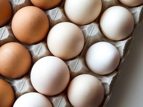 Названы возможные сроки снижения цен на курятину и яйца