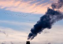 Росприроднадзор запланировал увеличить штрафы за экологические нарушения для предприятий
