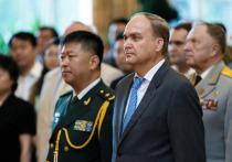 Интересам стран отвечало бы объединение усилий вокруг борьбы по ряду вопросов, считает Антонов