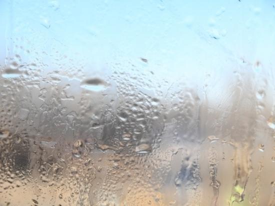 В Волгоградской области пройдут дожди 5 марта