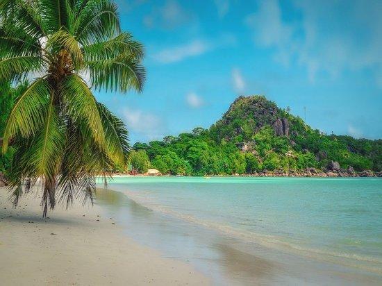 Сейшельские острова откроются для россиян 25 марта