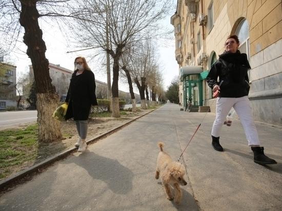 Самые молодые женщины Волгоградской области живут в городах