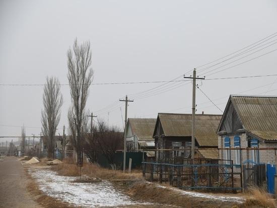 В четырех поселках Волгоградской области объявлен карантин по бешенству