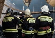 На юге Волгограда загорелись мусорные баки