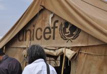 Армянские власти отказали в мандате представительнице ЮНИСЕФ в стране