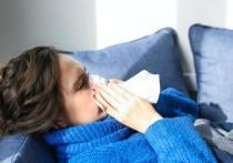 В первую неделю марта заболели ОРВИ 3995 жителей Марий Эл