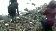В Приморье местные жители затискалидетеныша тюленя