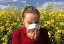 Германия: пыльца в воздухе повышает риск инфицирования коронавирусом