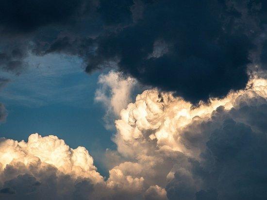 В Алтайском крае сохранится ветреная погода