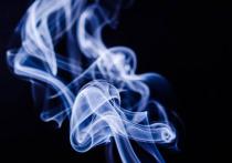 Не так давно доля нелегальных сигарет в России была ничтожной, но уже через год она может достичь 30%
