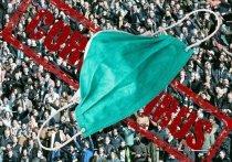 Ковид «притих»: в Карелии за сутки выявили 108 инфицированных