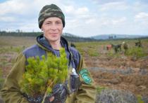 «Природа нещадно уничтожается»: «Байкальский заповедник» обратился к главе СКР Бастрыкину
