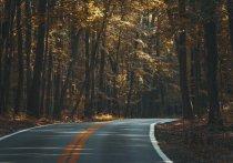 На автомобильных дорогах Серпухова станет светлее