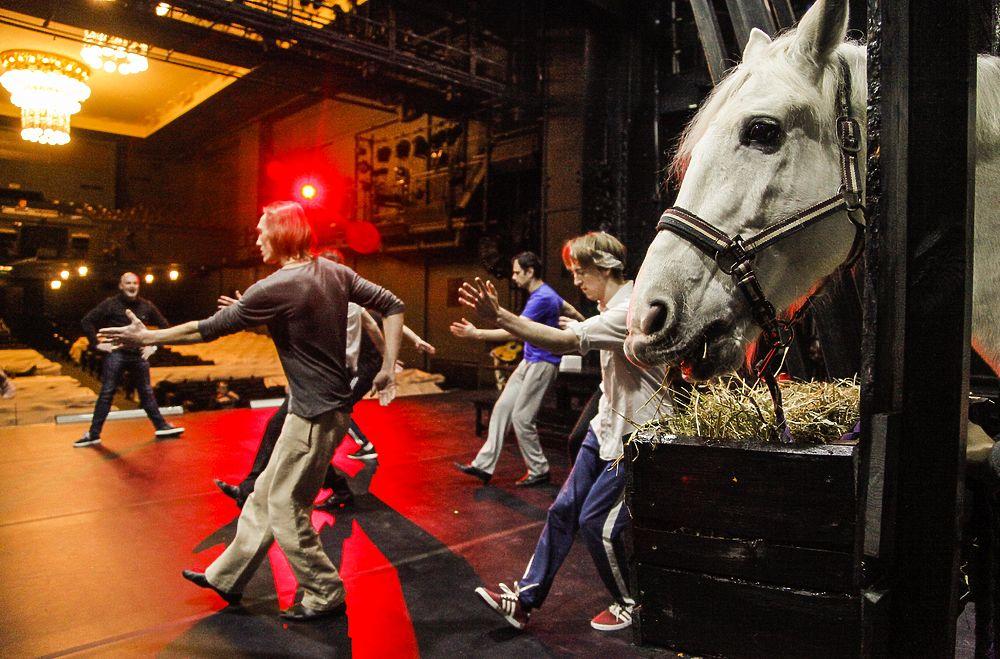 На сцену театра Ленком вывели коня: фото белогривого артиста