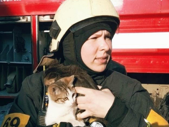 Как спасти питомца, пострадавшего на пожаре