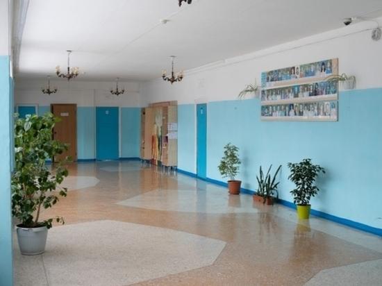 В одной из барнаульских школ отменили занятия из-за вспышки инфекции