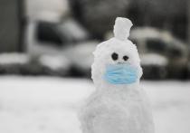 Эксперт связал спад ковид-заболеваемости с аномальными морозами