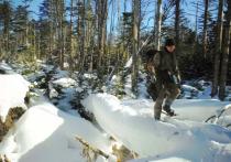 Курильчане прошли сотни километров чтобы посчитать соболей и лисиц