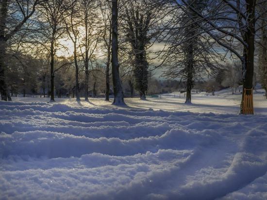 В Барнауле угонщик авто застрял во дворе, который не очистили от снега