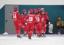 Впервые в истории!: финал чемпионата России по хоккею с мячом пройдёт в Красноярске