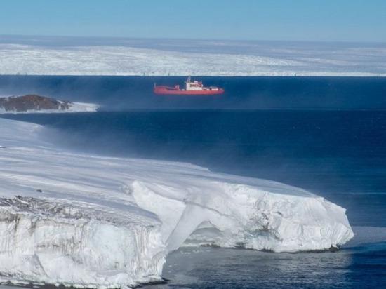 Петербургских полярников наконец вернут домой, за ними уже прибыло судно
