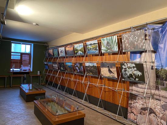 Туристский информационный центр Полистовья откроется в Пскове