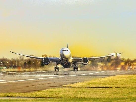 В Кузбассе для нужд авиации изъяли из земель сельхозназначения участок