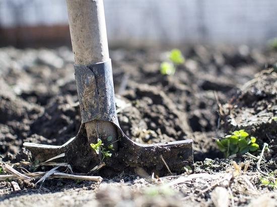 Чрезвычайно опасную сельскохозяйственную землю обнаружили во Владимирской области
