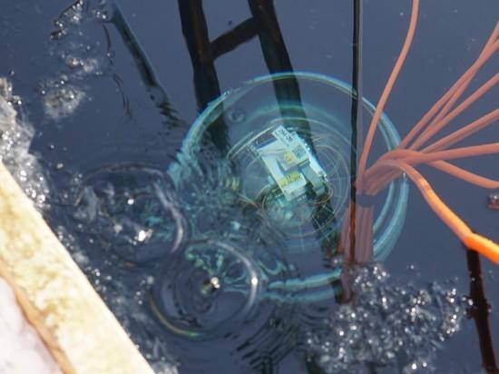 Он будет ловить нейтрино, поможет в исследованиях акватории, флоры и фауны озера