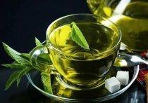 ТОП-5 полезных для здоровья напитков