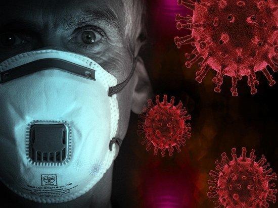 За сутки от коронавируса умерли 12 жителей Алтайского края