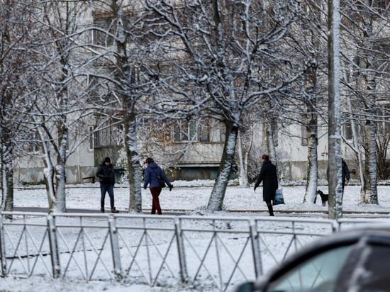 Названы районы Псковской области, больше всех пострадавшие в этом году из-за непогоды