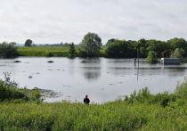 Под Рязанью русло реки Солотча расчистят с мощного грунтового насоса