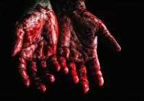 В июне 2020 в Великих Луках произошло убийство, шокировавшее всех жителей региона
