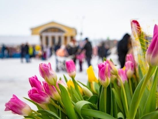 17 марта: главные новости дня по версии «МК в Карелии»
