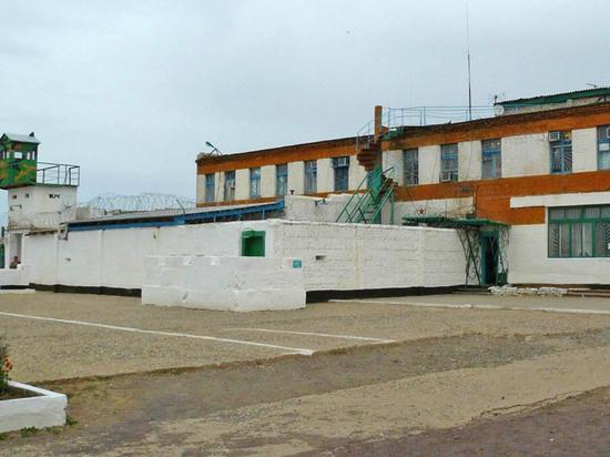 В колонии Калмыкии действовала террористическая ячейка