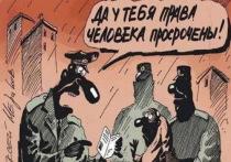 Как сопредседатель Альянса союза румын не смог добраться до Кишинева