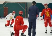 В Красноярске наблюдается небывалый ажиотаж вокруг финального матча чемпионата России по хоккею с мячом