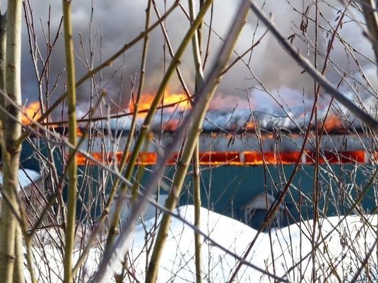 Пожар на Суоярвском лесозаводе тушили пожарным поездом