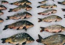 Завышение цен на рыбу не остановились даже в пост