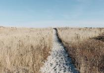 20 крымских фермеров заплатят повышенный налог за заброшенные участки