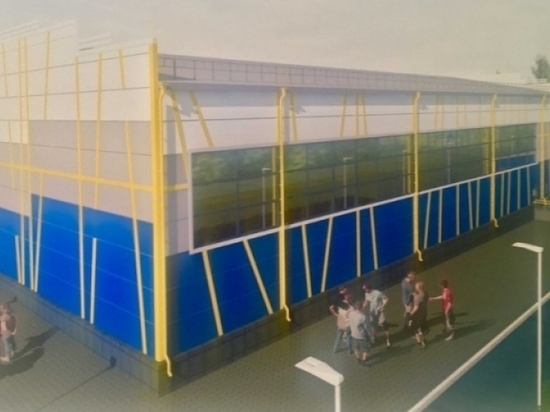 В Барнауле определили места для строительства будущих спорткомплексов