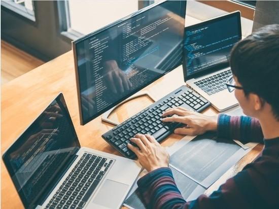 Каждый четвертый выпускник школы мечтает стать программистом