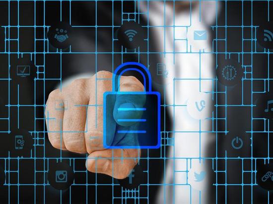 C начала 2019 года компании совместно обнаружили и заблокировали ряд недобросовестных интернет-ресурсов